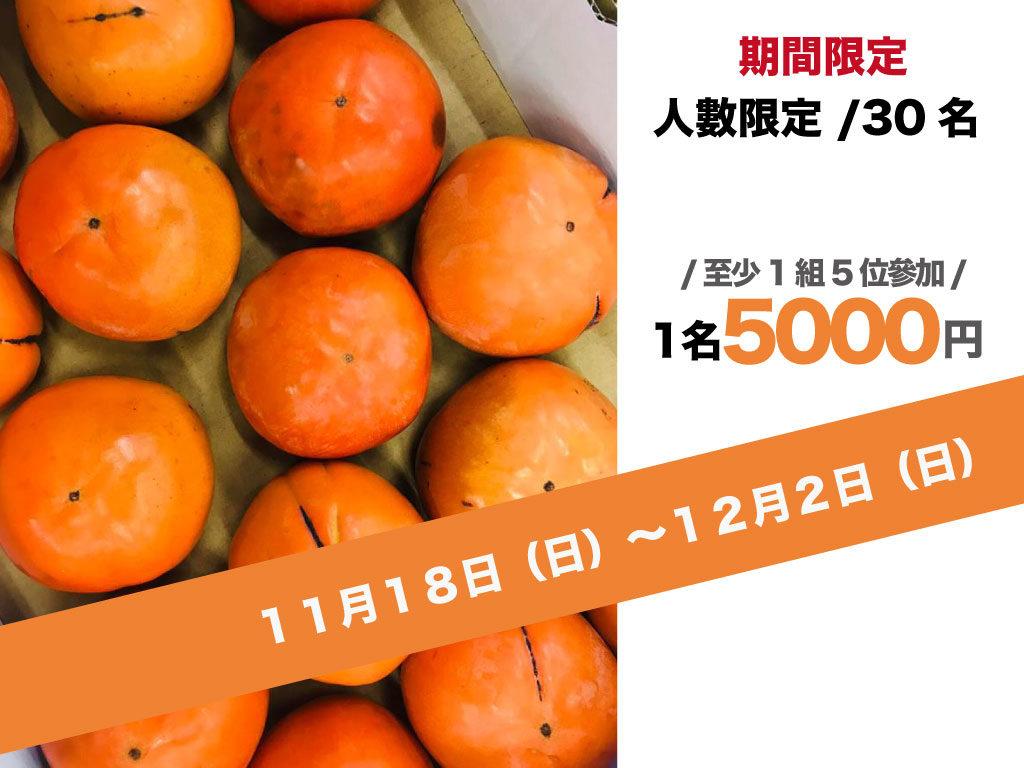 期間限定柿子體驗5000円